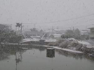12/26雪2P1080835