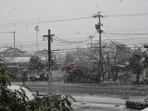 12/26雪3P1080836