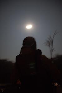 moon008.jpg