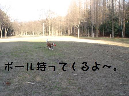 DSC02513.jpg