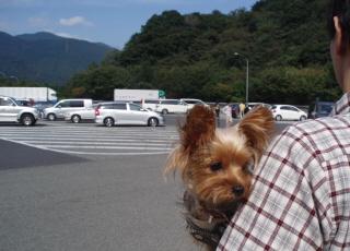 箱根にドライブ