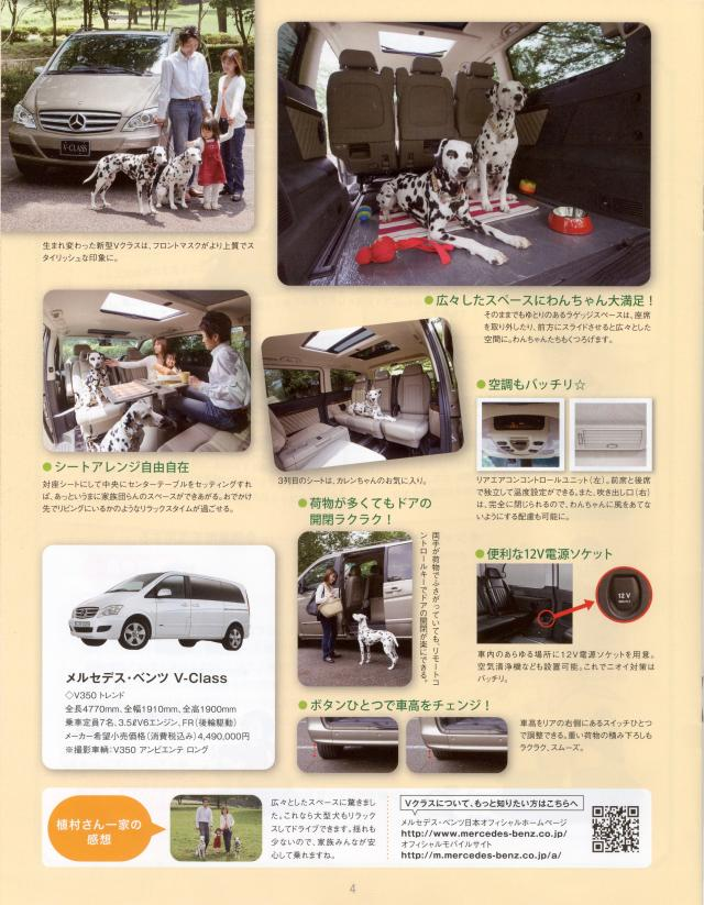 ワンちゃん2_convert_20110716121835