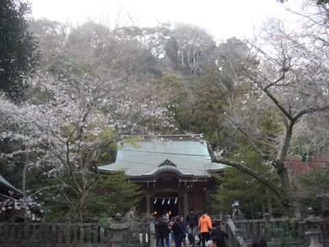 201204鎌倉10