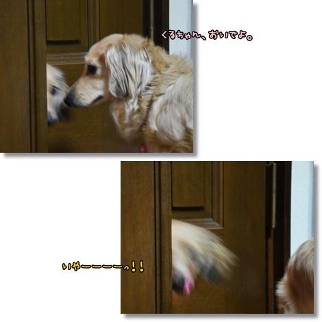 ドアからくるみ2-1