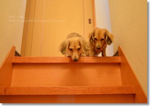 階段の柵 084