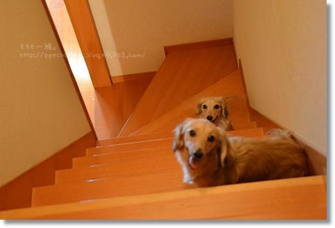 階段の柵 057