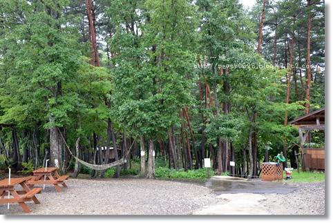 まきばの森 051