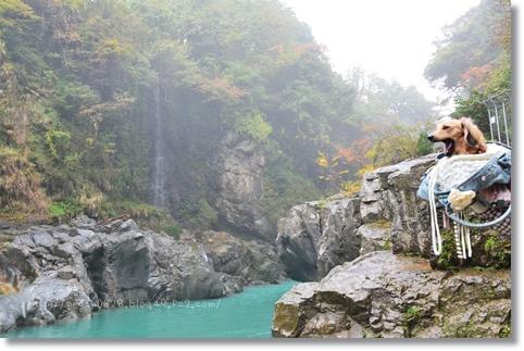 綿ヶ滝2013秋 028