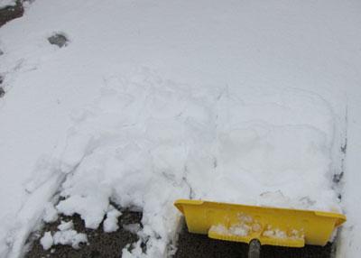 1201雪かき