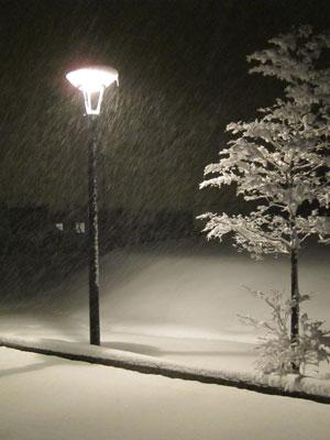 1201雪景色_夜