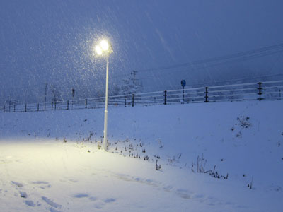 1203始まりは雪