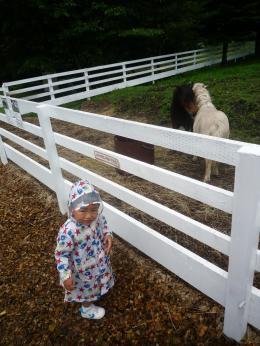 110730 馬とお子さん