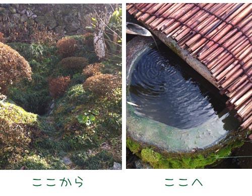 20120112-5.jpg