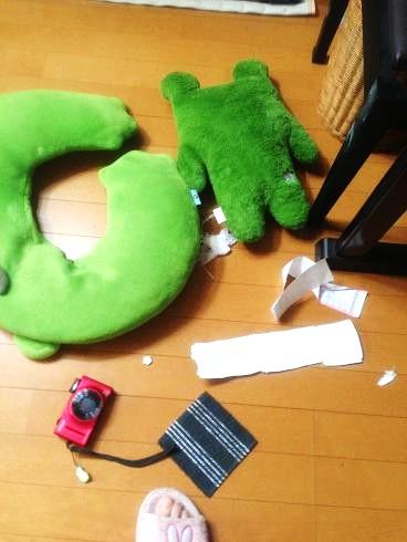 2013-07-04 ぱんだ5