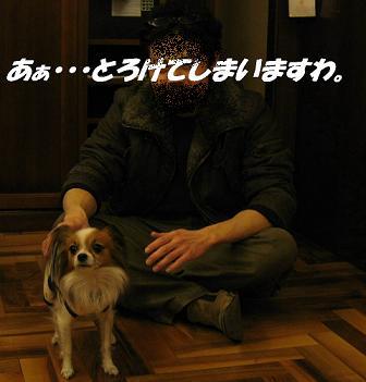 IMG_1638_sh01.jpg