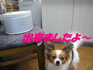 IMG_2107.jpg