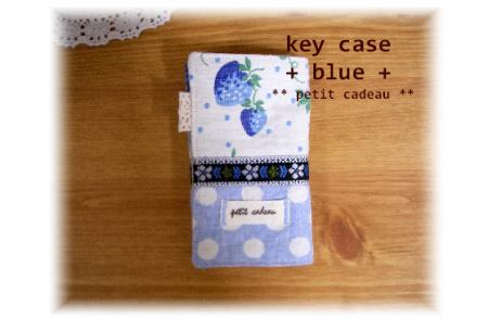 key-case-blue.jpg