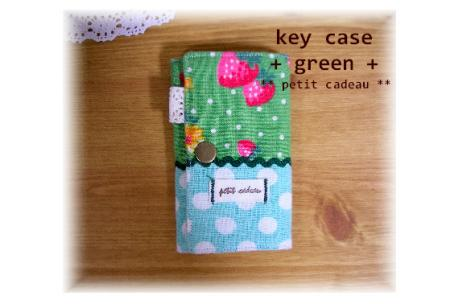 key-case-green.jpg