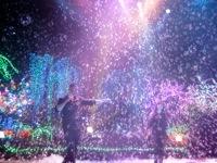 Bubble Show2