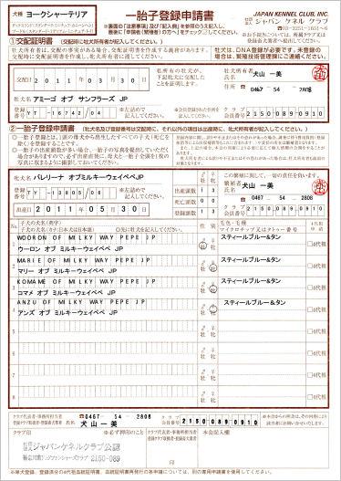 血統書【ちまきの子たち】