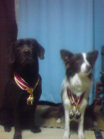 メダルいっぱ~い♪