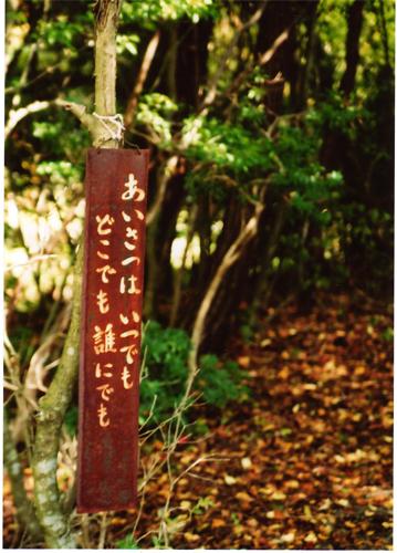 fuji-5.jpg