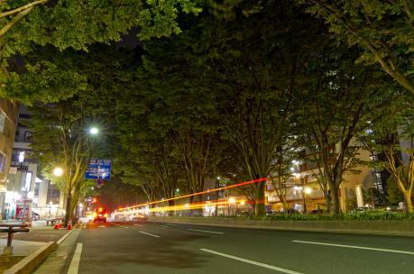 s20100531-_IGP4970.jpg