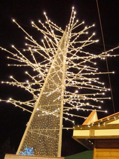 2011-11-25-12_convert_20111125191207.jpg