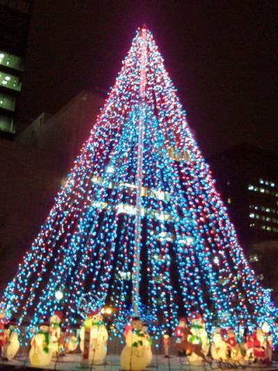 2011-11-29-11_convert_20111129185839.jpg
