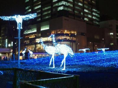 2011-11-29-12_convert_20111129185856.jpg