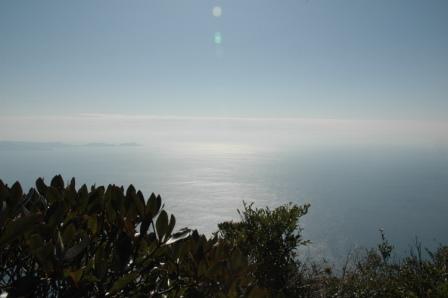 屋久島に続く海