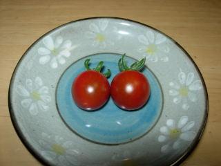 収穫ミニトマト0630