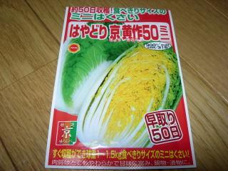 ミニ白菜種袋