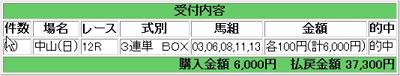 20080106中山12R万馬券