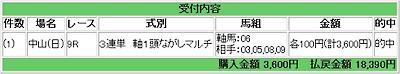20080106中山9R万馬券