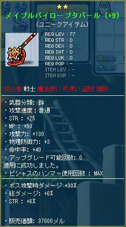 Maple110429_201119.jpg