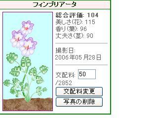 hana32.jpg