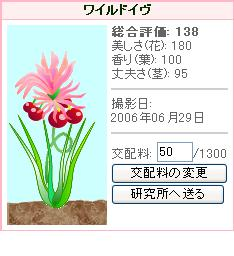 hana46.jpg