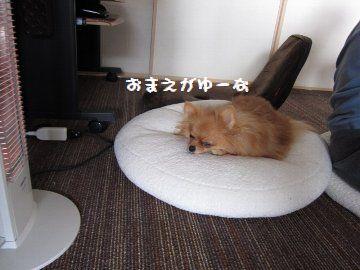 IMG_16238.jpg