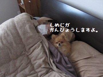 IMG_17021.jpg