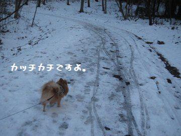 IMG_20114.jpg