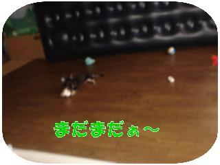 20070616173843.jpg