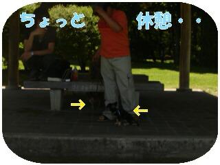 20070617202729.jpg