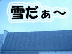 a1_20071121170936.jpg