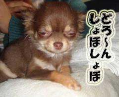 kimochi2.jpg