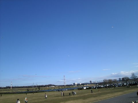 20080102_edogawa.jpg
