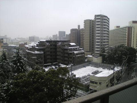 20080203_snow.jpg