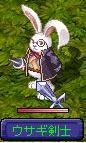 ウサギ剣士