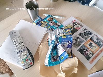 DSC_2270_20130903214147d54.jpg