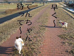 2012_0414_165522-IMG_7613.jpg